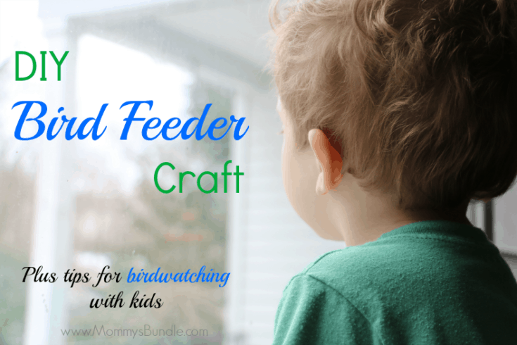 DIY Bird Feeder Craft & Bird Watching Tips for Outdoor Fun