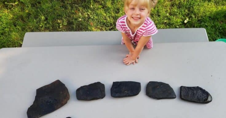 How to Make Painted Rocks for The Garden With Kids