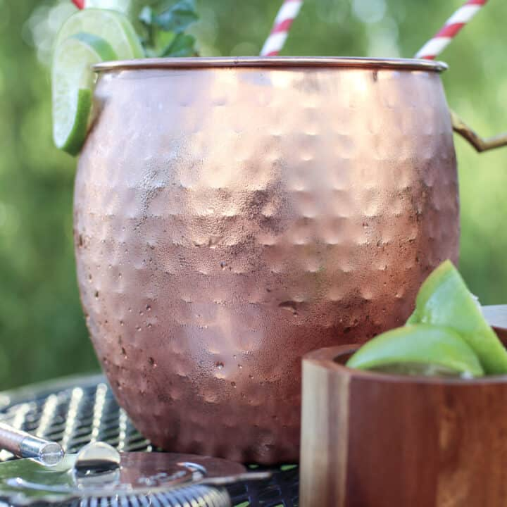 Skinny Strawberry Mint Moscow Mule